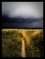 Calm Before The Storm by MIDangerfield