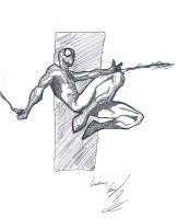 Spidey by lucasvfa