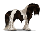 Gypsy Cob by pookyhorse