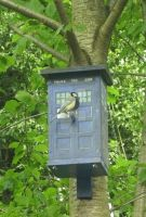 Tardis + Great Titmouse nestingbox by BerryMouse