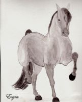 Spain horse by Evgra