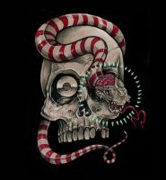 Snake and Skull by geezpot