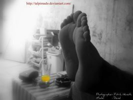soles on the table by talpimado