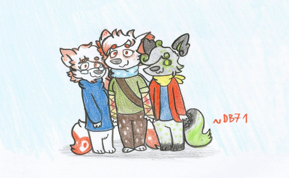 C - The Foxie Family by DragonBlast71