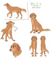 Character Sheet - Riley by nooby-banana