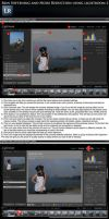 Lightroom2 SkinSoft + NR Tutor by lightronin