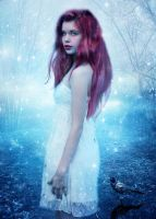Winter Tale by PlacidAnemia