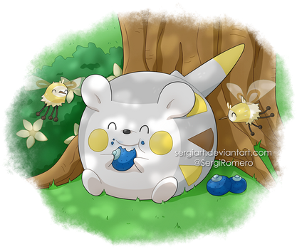 Pokemon Sun and Moon - Togedemaru and Cutiefly by SergiART
