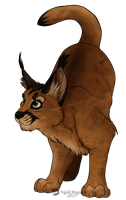 Caracal by NightMagican
