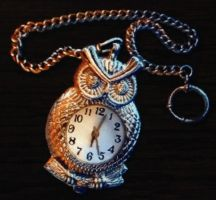 Pocket watch owl by isaac77598