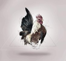 Chickens can fly by II-K3NPACHI-II