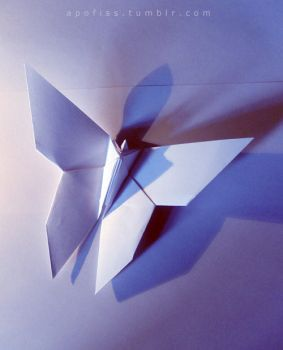 origami butterfly by Apofiss