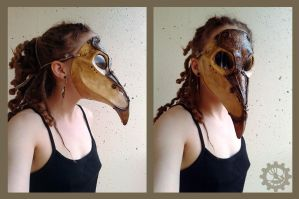 Plague doctor mask by ZombieArmadillo