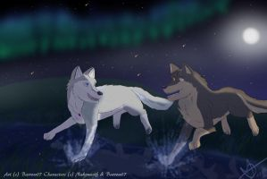 Chasing Stars (Gift For Nakou) by Barrow07