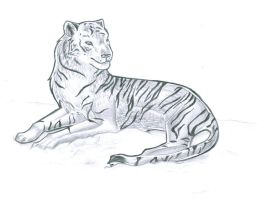 Traditional Tiger by scrii