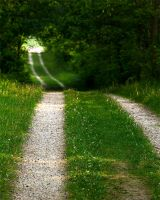 The winding path 01 by StudioFovea