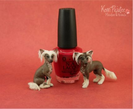 Miniature 1:12 Chinese Crested Dog sculptures by Pajutee