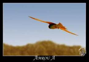 Sharp wings by AMROU-A