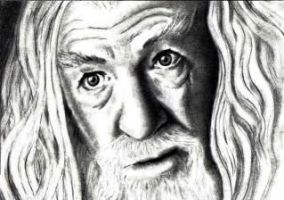 Gandalf LOTR by Dr-Horrible