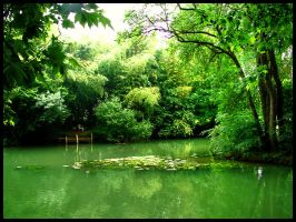 Green, green and green... by simoner