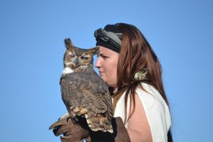 Owl - 1 by Silver-Stock-Images