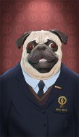 Educated Pug by JussiKarro