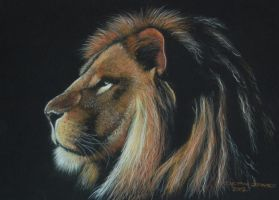 Lion demo -completed by DIXIEDEAN