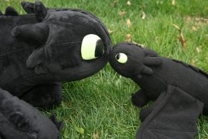 Toothless: I've been cloned? by Katy-A