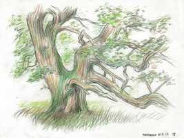 Life Drawing from park Dyrehaven in Denmark by JakobHansson