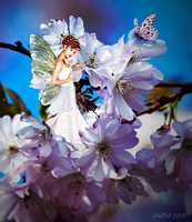 Cherry Blossom Fairy by Elsapret