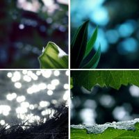 Lost in bokeh by Suvetar