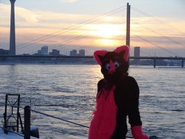 Sunset in germany by FurryFursuitMaker