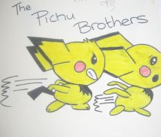Pichu brothers by msjordison