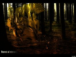 Forest of Eternity by enz0-project