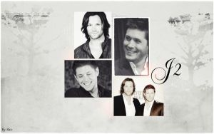 J2 - Black-White by shirleypaz
