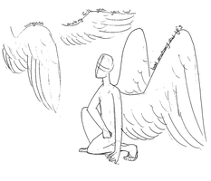 Wing Anatomy Doodles by CatsInBlack