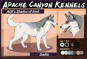 ACK's Shades of Cool: Sadie by Sedillo-Kennels