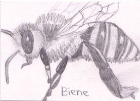 Biene by Ka-Kind