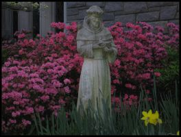 St. Francis in the Garden by jezebe11e