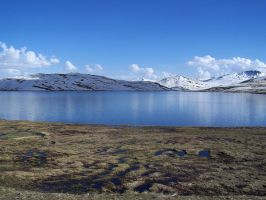 Deosai National Park I by salman-khan