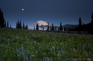 Blue Moon over Rainier by metacom