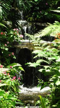 ButterflyGardenWaterfall by StariDreams