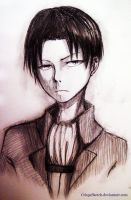 Levi by CrispySketch