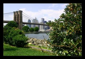 The Brooklyn Bridge Park by imaginee