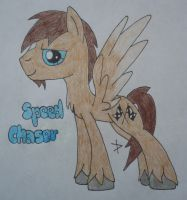 Speed Chaser (My Big Brother as a Pegasis)!!! by TopazBeats