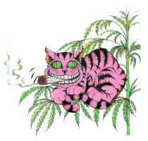 Cheshire Cat by TwoNineteen