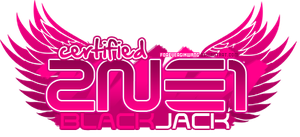 2NE1: Certified BlackJack by foreverGIKWANG