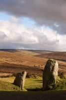 Pillars of Dartmoor by parallel-pam