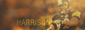 James Harrison by OldChili