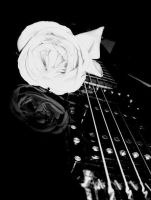Guitar and rose by manson-sex